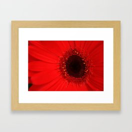 The force that through the green fuse drives the flower Framed Art Print