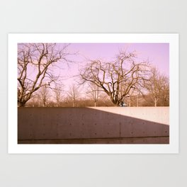 Tadao's Brilliant Vision Art Print