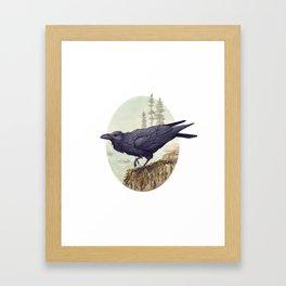 Raven of the North Atlantic Framed Art Print