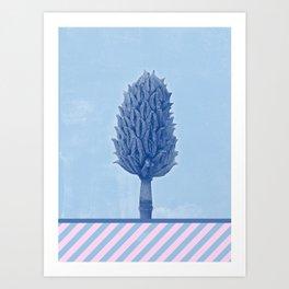 Magnolia Cone - Winter in Opatija #2 Art Print