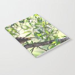 Warbler in Woods Notebook