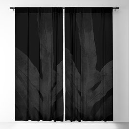 At Midnight Ferns Get no Love. Nightmare. Blackout Curtain
