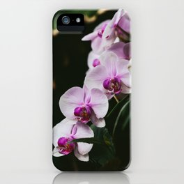 White & Purple Orchids iPhone Case