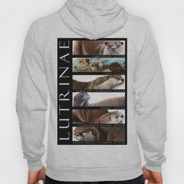 Otters of the World Hoody