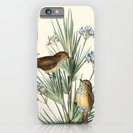 Little Birds and Flowers III iPhone Case