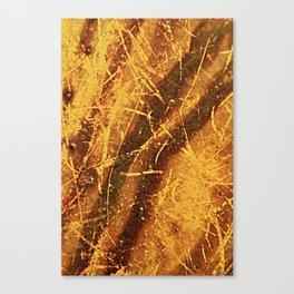 old  smudges Canvas Print