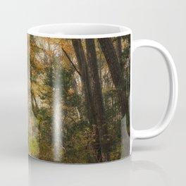 Autumn in Seashore State Park II Coffee Mug