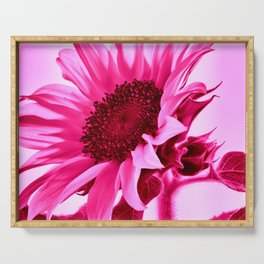 Hot Pink Sunflower Serving Tray
