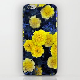Bright Yellow Flowers on Blue #1 #floral #decor #art #society6 iPhone Skin