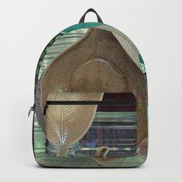 China Bowl, 2, 3 Backpack