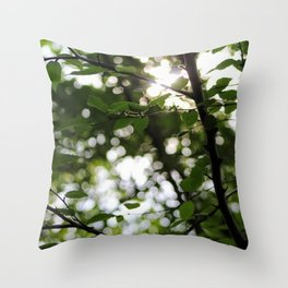 Early Morning Forest Hike Throw Pillow