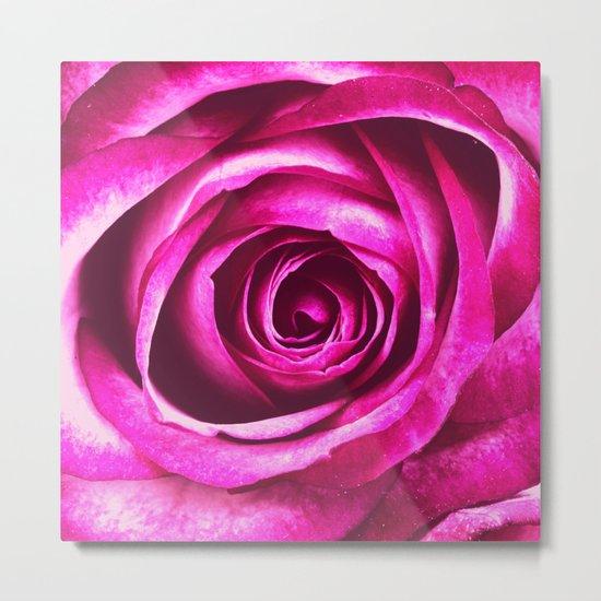 Pink Purple Rose Metal Print