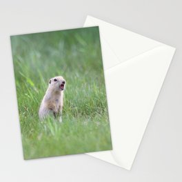 Prairie Dog Calls Stationery Cards