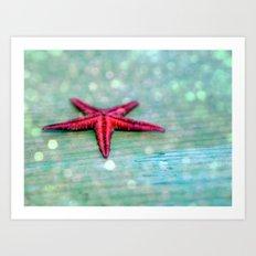 The starfish Art Print