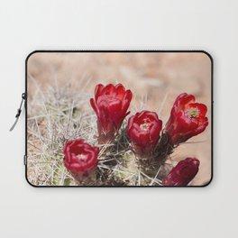 Cactus Flowers at Canyonlands, Utah Laptop Sleeve