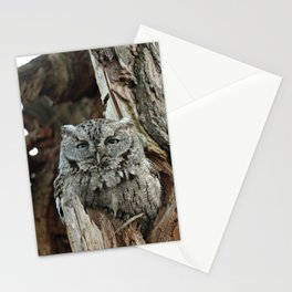 Made to measure Stationery Cards