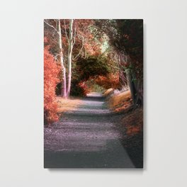 Autumns Solitude Metal Print