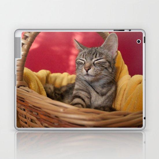 Cat photography Laptop & iPad Skin