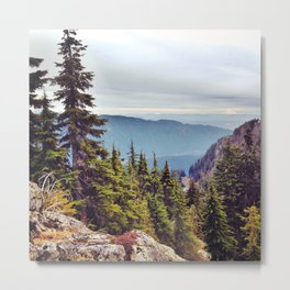 Pacific Northwest forests and mountains Metal Print