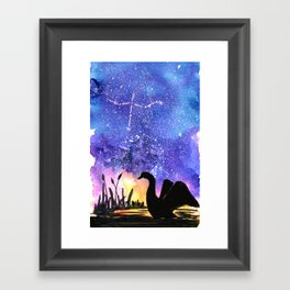 Cygnus Framed Art Print