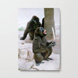 Gorilla laughing Metal Print