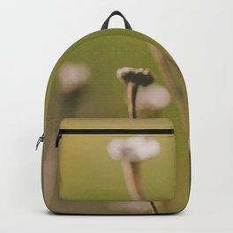 Subtleness Macro Photo Backpack