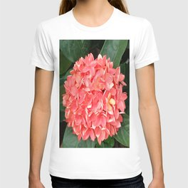 ORANGE BOUQUET T-shirt