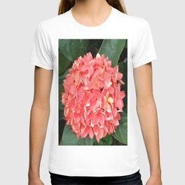 ORANGE BOUQUET T-shirt