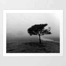 Alone in the Fog.  Art Print