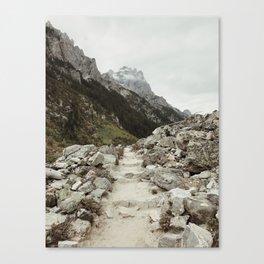 Cascade Canyon Canvas Print
