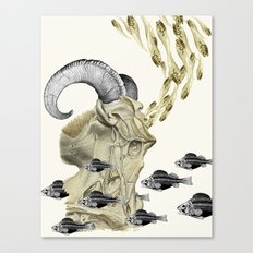 the cusp of rebirth pisces aries anatomical zodiac collage by bedelgeuse Canvas Print