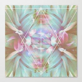 COSMIC NATURE III Canvas Print