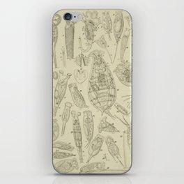 Microscopic Biology iPhone Skin