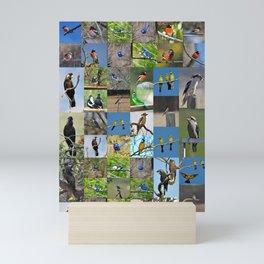 birds of rainbow farm Mini Art Print
