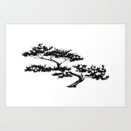 Bonzai Tree on White Background Art Print