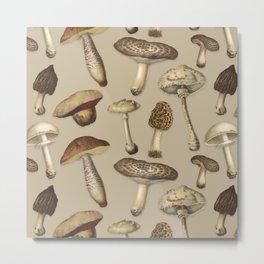 Fun Fungi Mushrooms No. 4 Metal Print