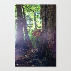 Twilight Fungus Canvas Print