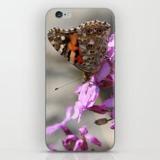 Painted Lady Butterfly on Pink Flowers iPhone & iPod Skin