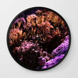 Microcosmos Wall Clock