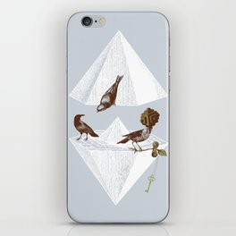 Guardian of Secrets iPhone Skin