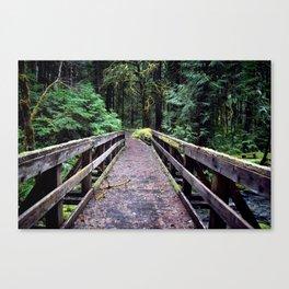 Into the Jungle Canvas Print