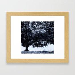 HalfTtree Framed Art Print