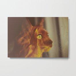 Roget in fire Metal Print
