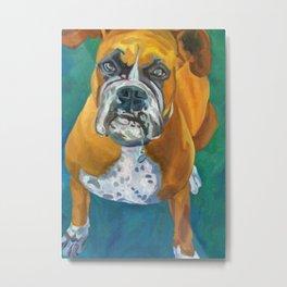 Boxer Dog Fine Art Print Metal Print