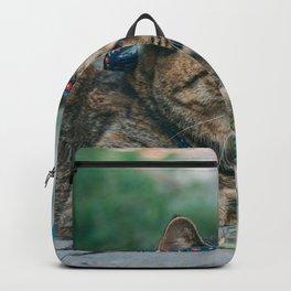 Cat by Spencer Gu Backpack