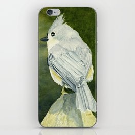 On Top of the World–Song Bird iPhone Skin
