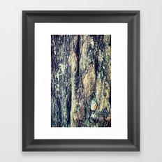Old Tree Chapel Hill Framed Art Print