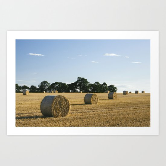 Evening light over round bales of straw in a recently harvested field. Norfolk, UK. Art Print