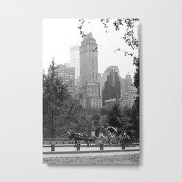 Central Park Metal Print