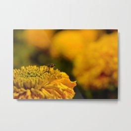 Flying Flower Metal Print